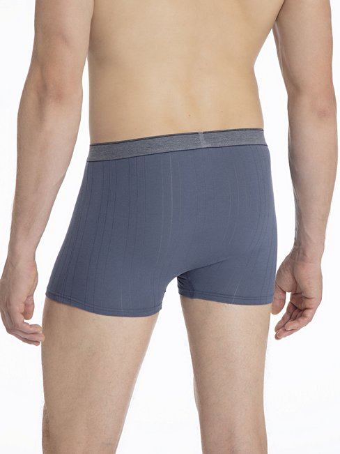 CALIDA Pure & Striped New Boxer mit Elastikbund