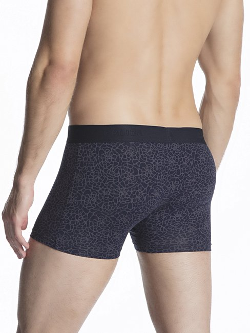 CALIDA Grafic Cotton New Boxer, Elastikbund