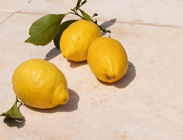CALIDA Mood Lemon
