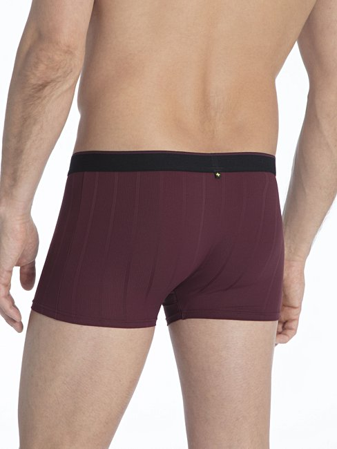 CALIDA Performance Boxer brief, elastic waistband