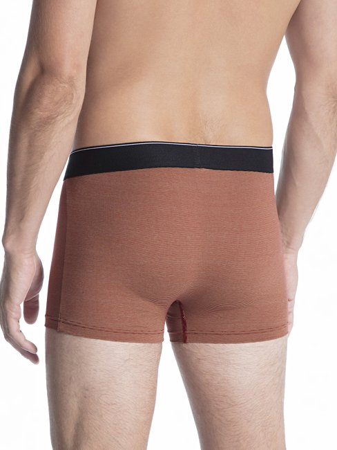 CALIDA Cotton Stretch New Boxer mit Elastikbund