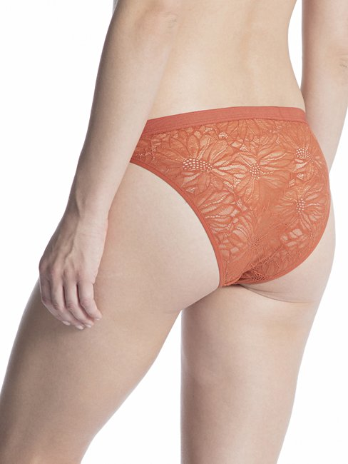 CALIDA Lace Trend Brief, low cut
